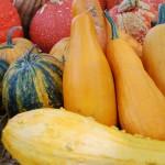 Smak zdrowia w jesiennych warzywach