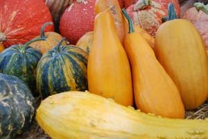 Warzywa jesieni