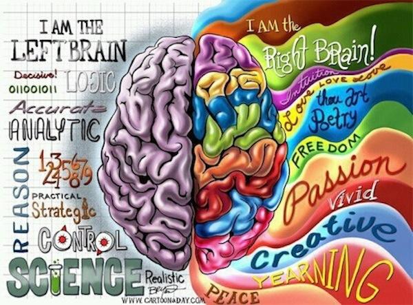 Dwie strony jednego mózgu