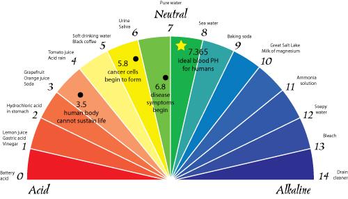 Odczyn pH organizmu