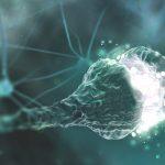 Ćwiczenia fizyczne a kondycja mózgu